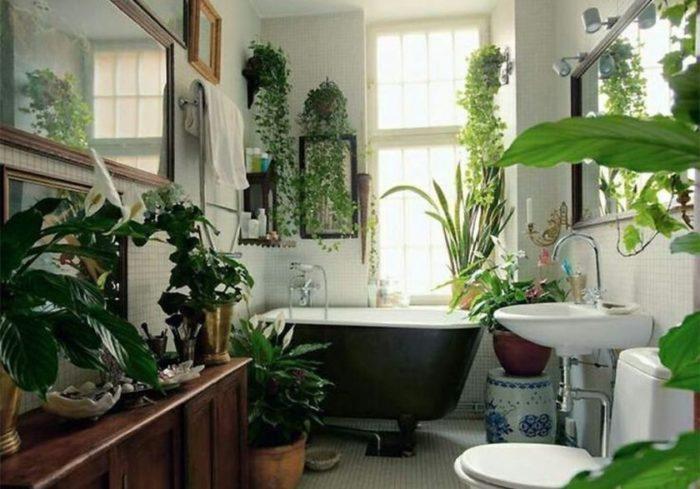 ванная-комната-озеленение